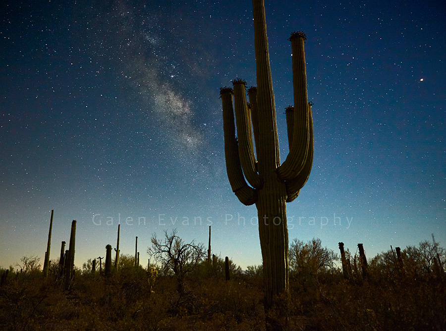 Milky Way over the Sonoran Desert
